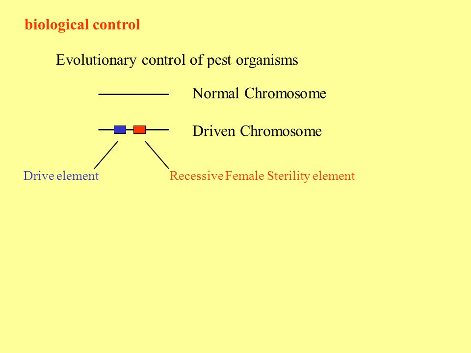 biological control Evolutionary control of pest organisms Normal Chromosome Driven Chromosome Recessive Female Sterility elementDrive element