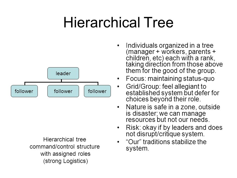 Hierarchical Tree Individuals organized in a tree (manager + workers, parents + children, etc) each with a rank, taking direction from those above them for the good of the group.
