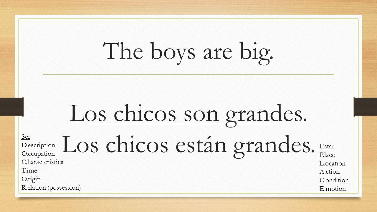 The boys are big. Los chicos son grandes. Los chicos están grandes. Ser D.escription O.ccupation C.haracteristics T.ime O.rigin R.elation (possession)