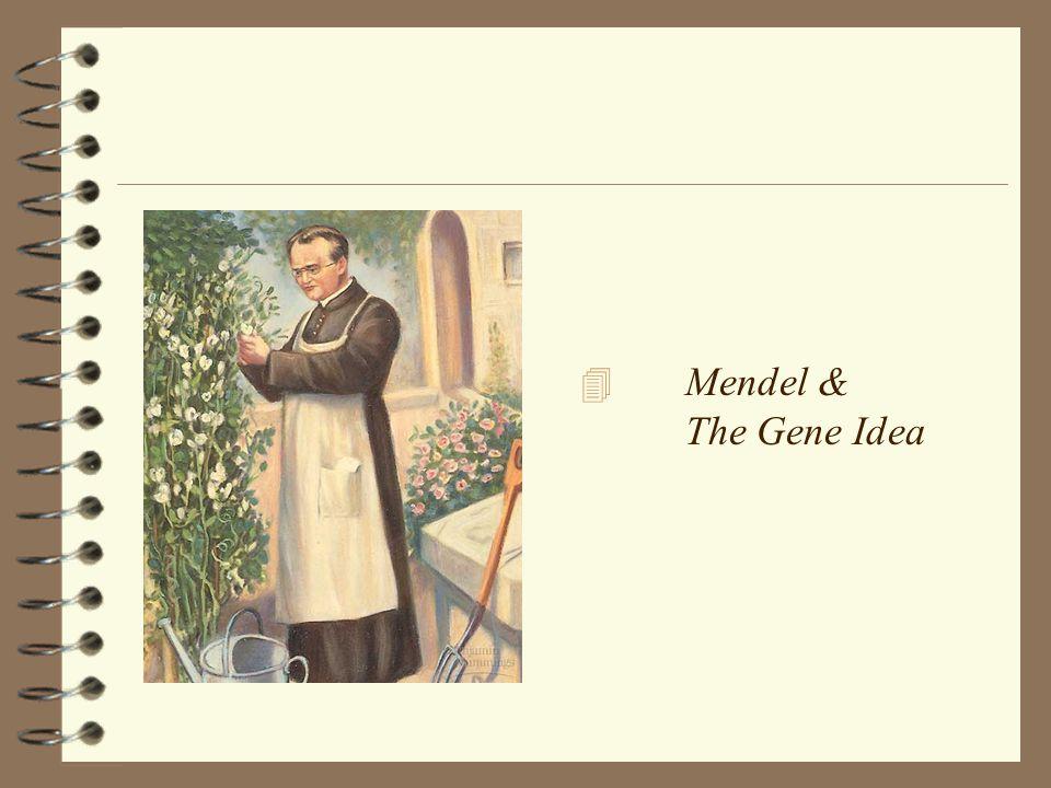 4 Mendel & The Gene Idea