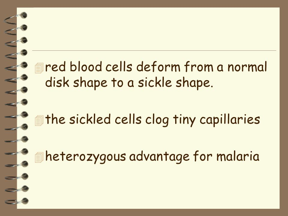 4 red blood cells deform from a normal disk shape to a sickle shape.