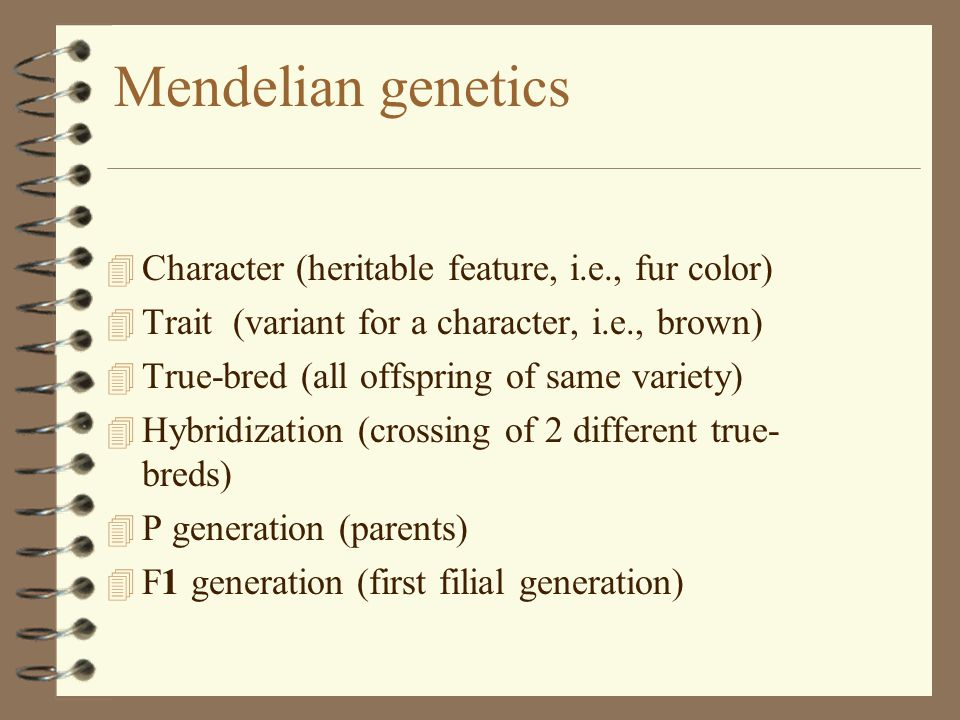 Mendelian genetics 4 Character (heritable feature, i.e., fur color) 4 Trait (variant for a character, i.e., brown) 4 True-bred (all offspring of same variety) 4 Hybridization (crossing of 2 different true- breds) 4 P generation (parents) 4 F1 generation (first filial generation)