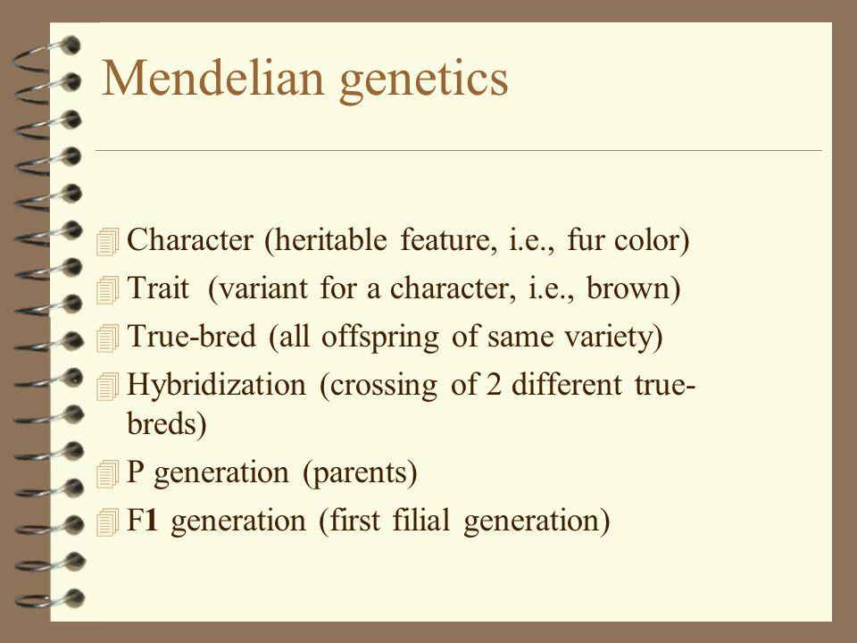 Non-single gene genetics 4 Pleiotropy: genes with multiple phenotypic effect.