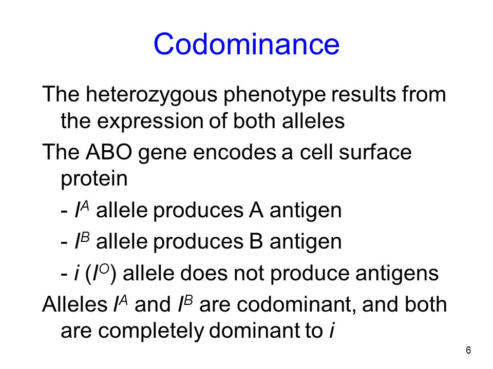 6 Codominance The heterozygous phenotype results from the expression of both alleles The ABO gene encodes a cell surface protein - I A allele produces