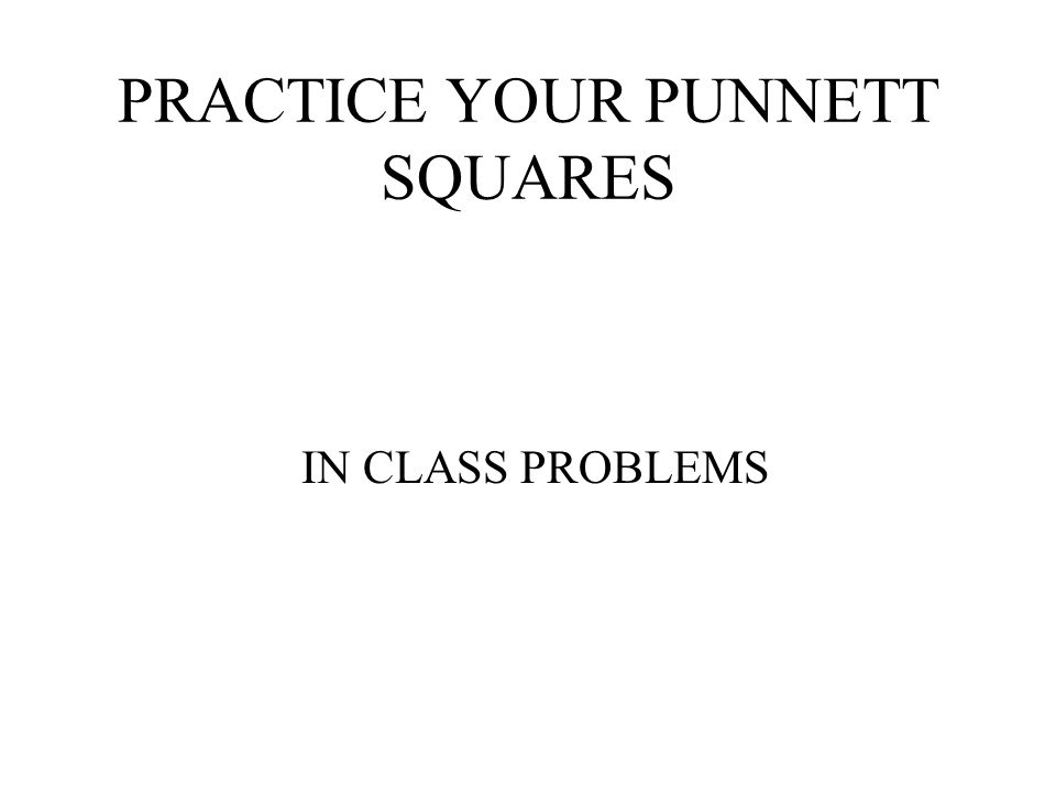 PRACTICE YOUR PUNNETT SQUARES IN CLASS PROBLEMS