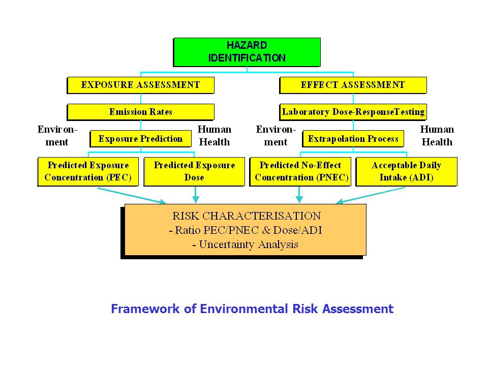 Framework of Environmental Risk Assessment