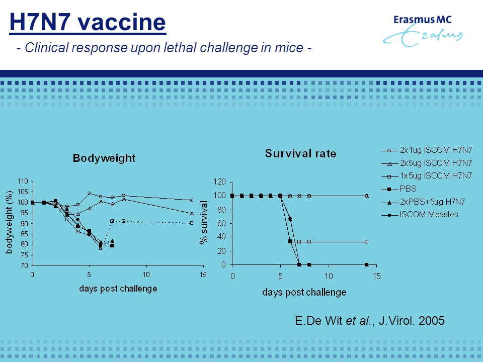 - Clinical response upon lethal challenge in mice - H7N7 vaccine E.De Wit et al., J.Virol. 2005