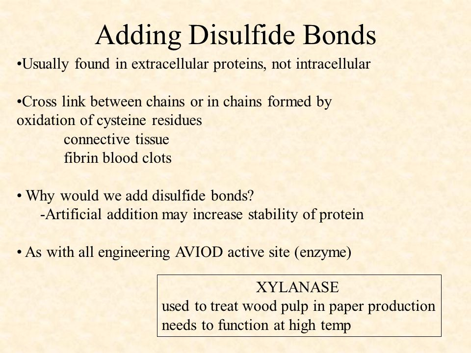 Adding Disulfide Bonds Usually found in extracellular proteins, not intracellular Cross link between chains or in chains formed by oxidation of cysteine residues connective tissue fibrin blood clots Why would we add disulfide bonds.