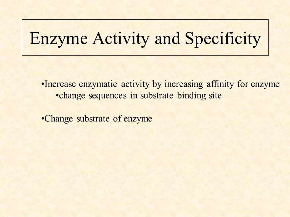 Enzyme Activity and Specificity Increase enzymatic activity by increasing affinity for enzyme change sequences in substrate binding site Change substrate of enzyme