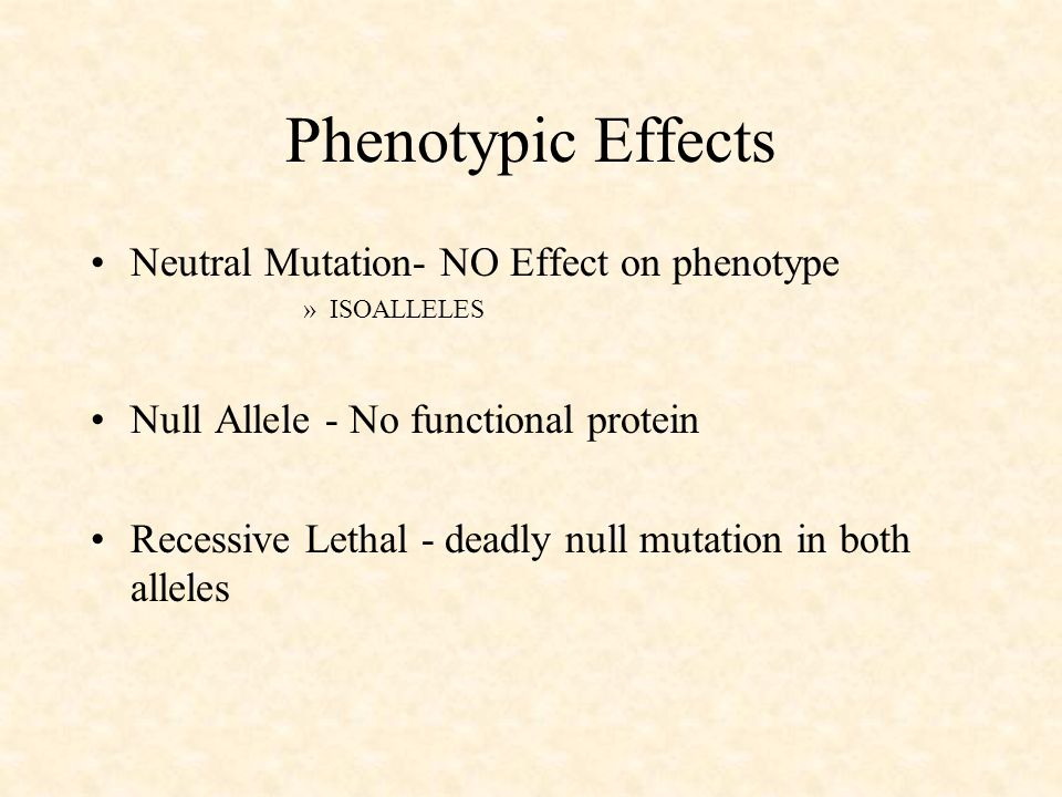 Phenotypic Effects Neutral Mutation- NO Effect on phenotype »ISOALLELES Null Allele - No functional protein Recessive Lethal - deadly null mutation in