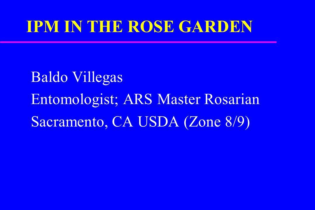 IPM IN THE ROSE GARDEN Baldo Villegas Entomologist; ARS Master Rosarian Sacramento, CA USDA (Zone 8/9)