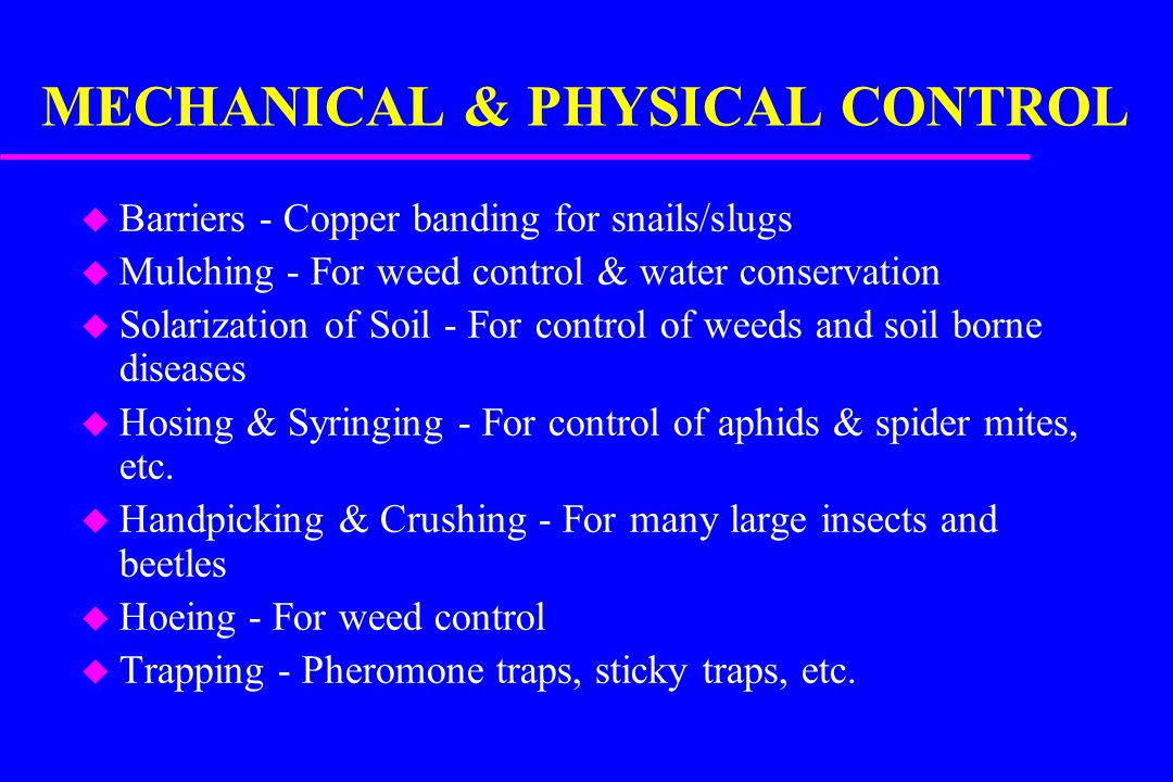 MECHANICAL & PHYSICAL CONTROL u Barriers - Copper banding for snails/slugs u Mulching - For weed control & water conservation u Solarization of Soil - For control of weeds and soil borne diseases u Hosing & Syringing - For control of aphids & spider mites, etc.