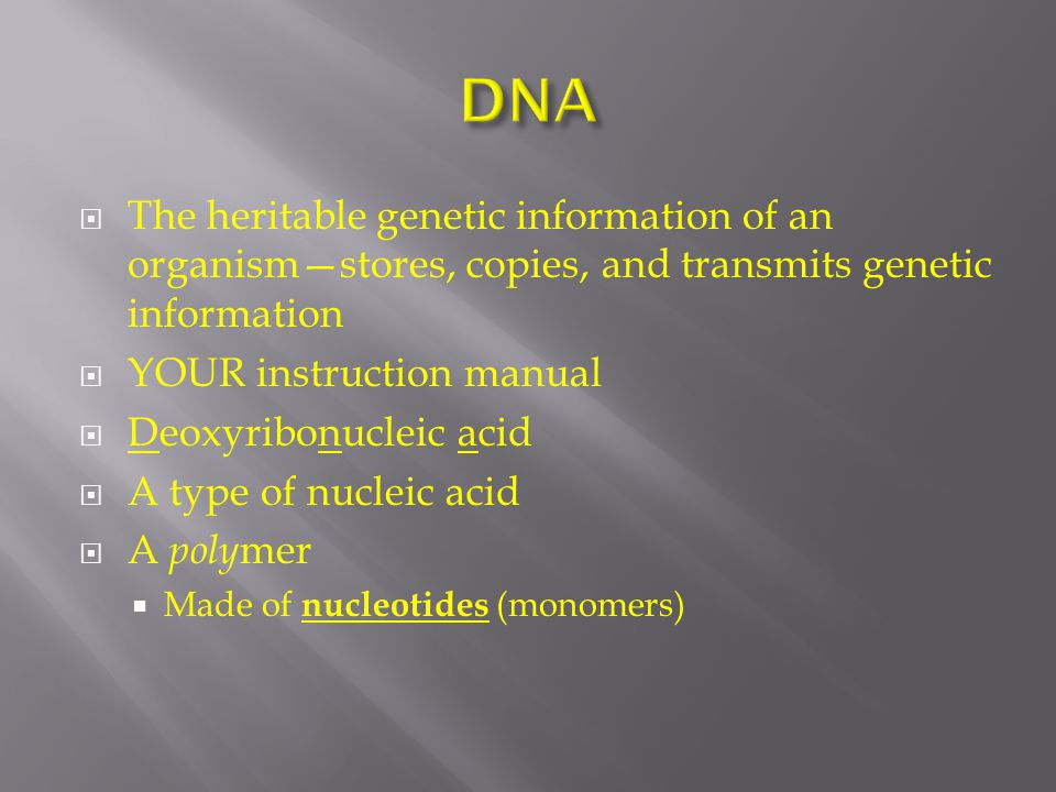 The heritable genetic information of an organism—stores, copies, and transmits genetic information  YOUR instruction manual  Deoxyribonucleic acid  A type of nucleic acid  A poly mer  Made of nucleotides (monomers)