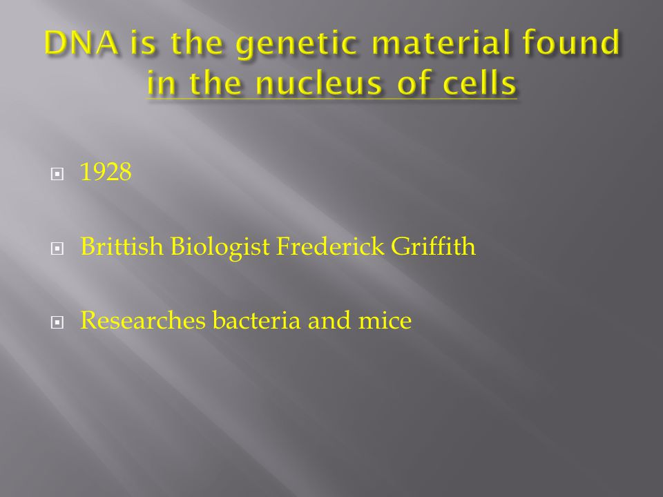  1928  Brittish Biologist Frederick Griffith  Researches bacteria and mice