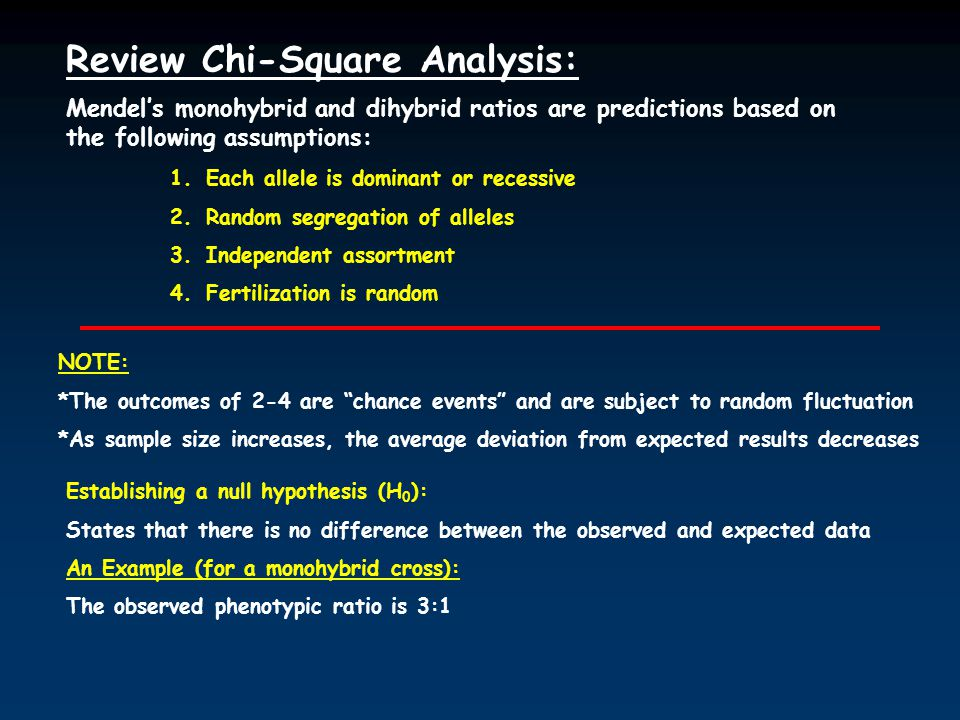 Review Chi-Square Analysis: Mendel's monohybrid and dihybrid ratios are predictions based on the following assumptions: 1.Each allele is dominant or recessive 2.Random segregation of alleles 3.Independent assortment 4.Fertilization is random NOTE: *The outcomes of 2-4 are chance events and are subject to random fluctuation *As sample size increases, the average deviation from expected results decreases Establishing a null hypothesis (H 0 ): States that there is no difference between the observed and expected data An Example (for a monohybrid cross): The observed phenotypic ratio is 3:1