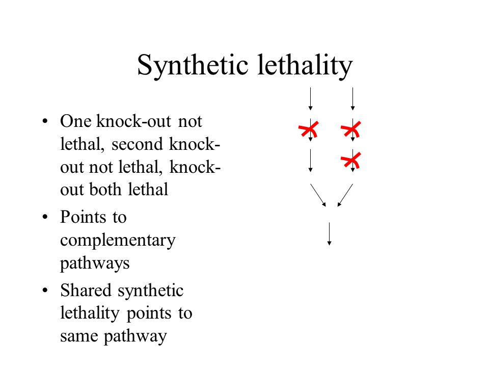 Synthetic lethality One knock-out not lethal, second knock- out not lethal, knock- out both lethal Points to complementary pathways Shared synthetic lethality points to same pathway