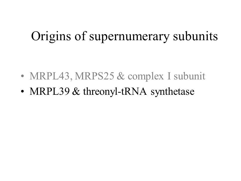 MRPL39 & threonyl-tRNA synthetase Origins of supernumerary subunits
