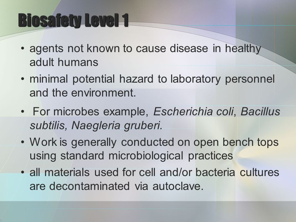 Biosafety Level 2 moderate potential hazard to personnel and the environment.