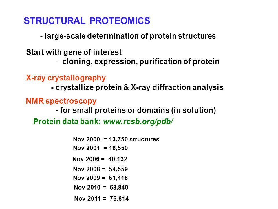 STRUCTURAL PROTEOMICS - large-scale determination of protein structures Start with gene of interest – cloning, expression, purification of protein - crystallize protein & X-ray diffraction analysis NMR spectroscopy - for small proteins or domains (in solution) Protein data bank: www.rcsb.org/pdb/ X-ray crystallography Nov 2000 = 13,750 structures Nov 2001 = 16,550 Nov 2006 = 40,132 Nov 2008 = 54,559 Nov 2009 = 61,418 Nov 2011 = 76,814
