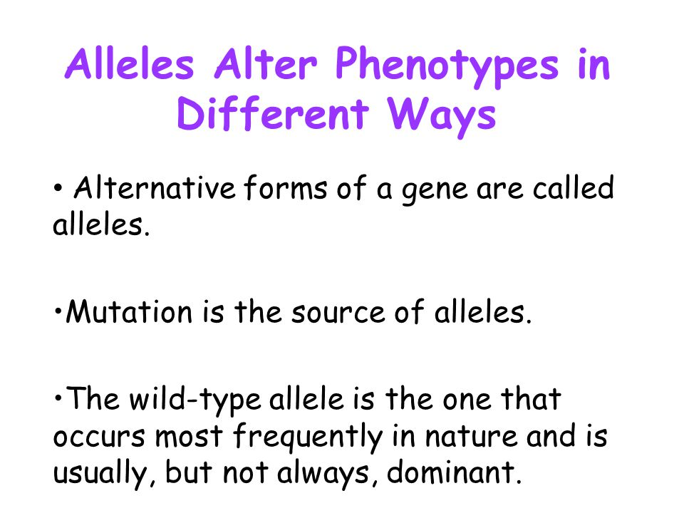 Mutations Often, a mutation causes the reduction or loss of the specific wild-type function.
