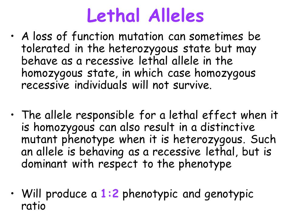 Lethal Alleles A loss of function mutation can sometimes be tolerated in the heterozygous state but may behave as a recessive lethal allele in the hom