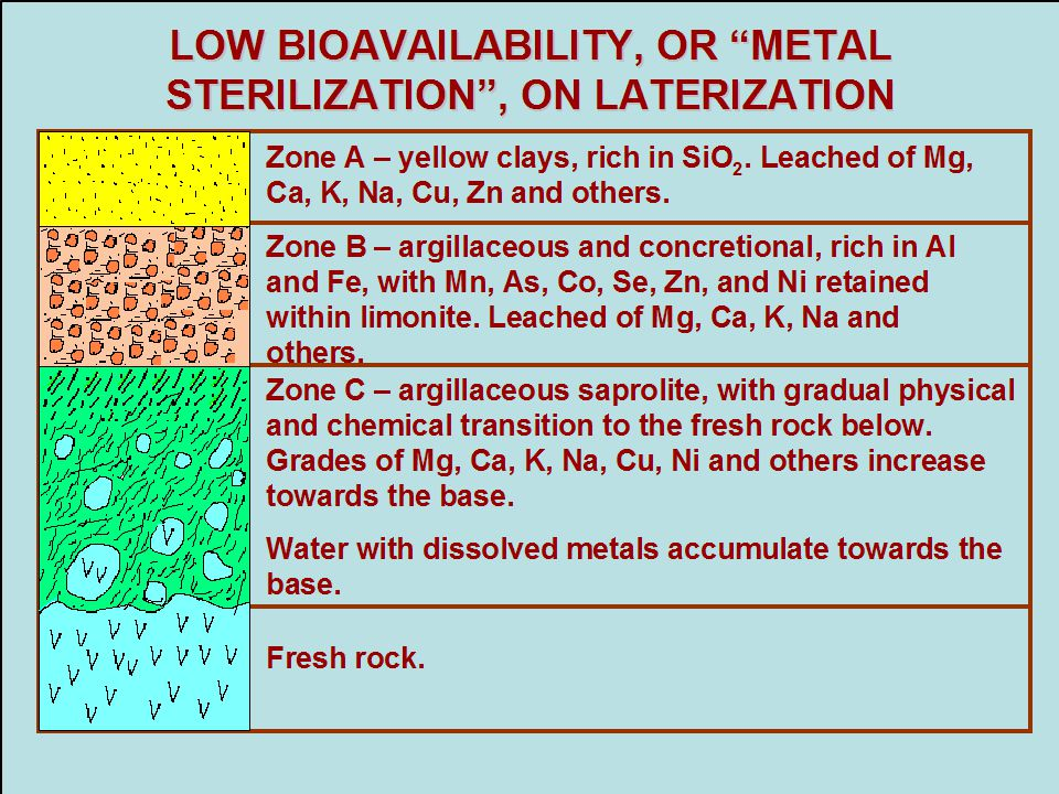 """LOW BIOAVAILABILITY, OR """"METAL STERILIZATION"""", ON LATERIZATION Zone A – yellow clays, rich in SiO 2. Leached of Mg, Ca, K, Na, Cu, Zn and others. Zone"""