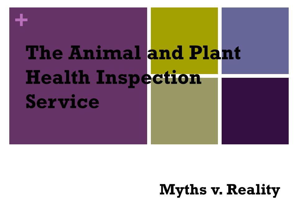 + The Animal and Plant Health Inspection Service Myths v. Reality