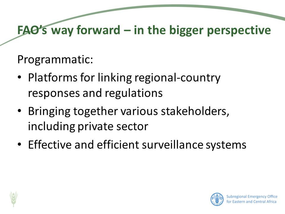 Programmatic: Platforms for linking regional-country responses and regulations Bringing together various stakeholders, including private sector Effective and efficient surveillance systems FAO's way forward – in the bigger perspective