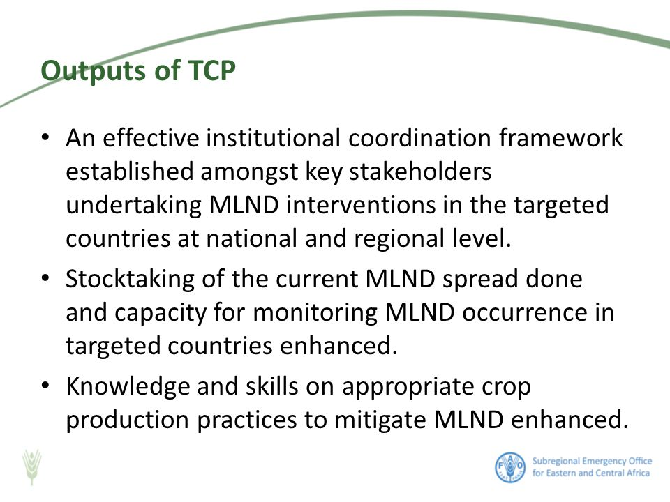 An effective institutional coordination framework established amongst key stakeholders undertaking MLND interventions in the targeted countries at national and regional level.