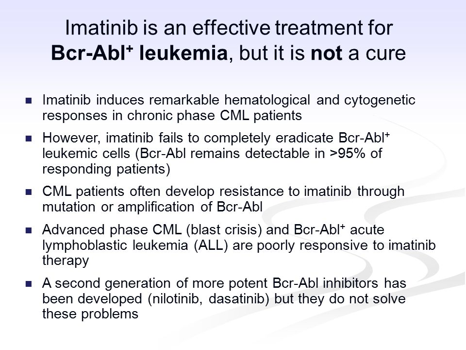 Imatinib is an effective treatment for Bcr-Abl + leukemia, but it is not a cure Imatinib induces remarkable hematological and cytogenetic responses in chronic phase CML patients However, imatinib fails to completely eradicate Bcr-Abl + leukemic cells (Bcr-Abl remains detectable in >95% of responding patients) CML patients often develop resistance to imatinib through mutation or amplification of Bcr-Abl Advanced phase CML (blast crisis) and Bcr-Abl + acute lymphoblastic leukemia (ALL) are poorly responsive to imatinib therapy A second generation of more potent Bcr-Abl inhibitors has been developed (nilotinib, dasatinib) but they do not solve these problems