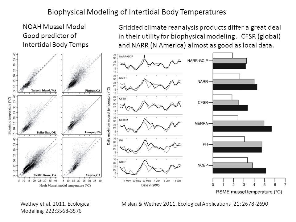Biophysical Modeling of Intertidal Body Temperatures Wethey et al. 2011. Ecological Modelling 222:3568-3576 Mislan & Wethey 2011. Ecological Applicati
