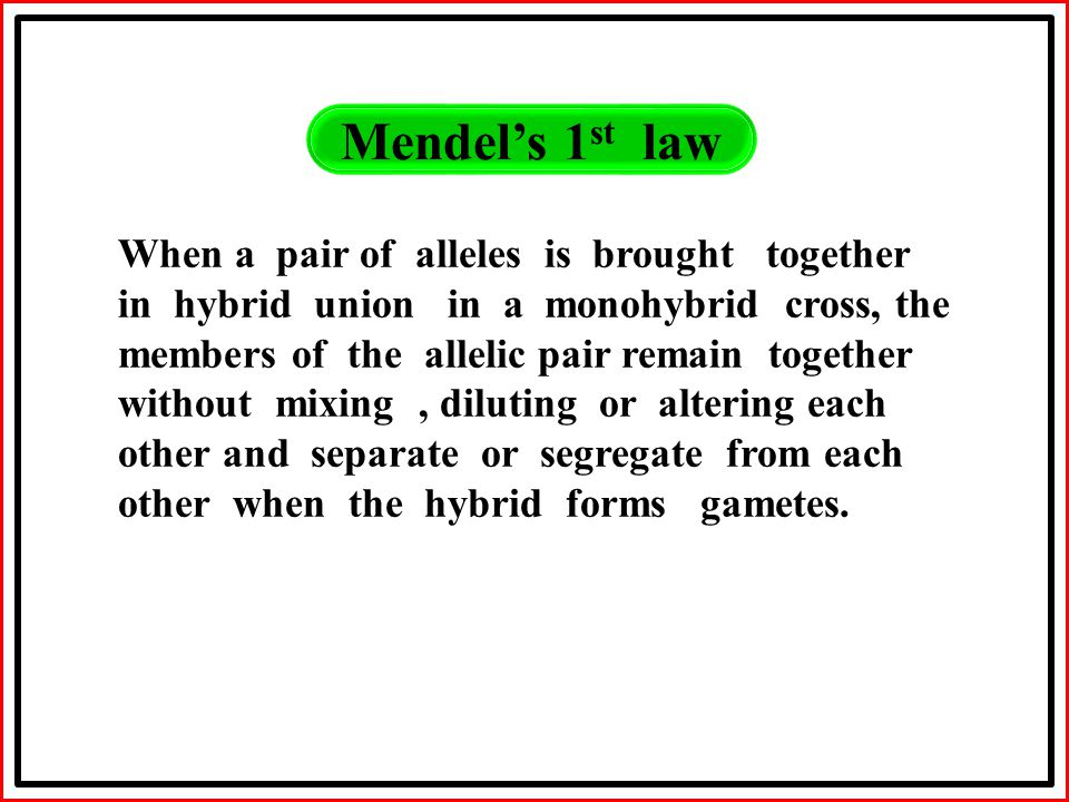 Mendel's 1 st law When a pair of alleles is brought together in hybrid union in a monohybrid cross, the members of the allelic pair remain together without mixing, diluting or altering each other and separate or segregate from each other when the hybrid forms gametes.