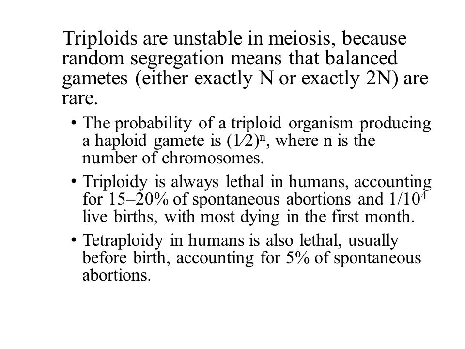 Triploids are unstable in meiosis, because random segregation means that balanced gametes (either exactly N or exactly 2N) are rare. The probability o