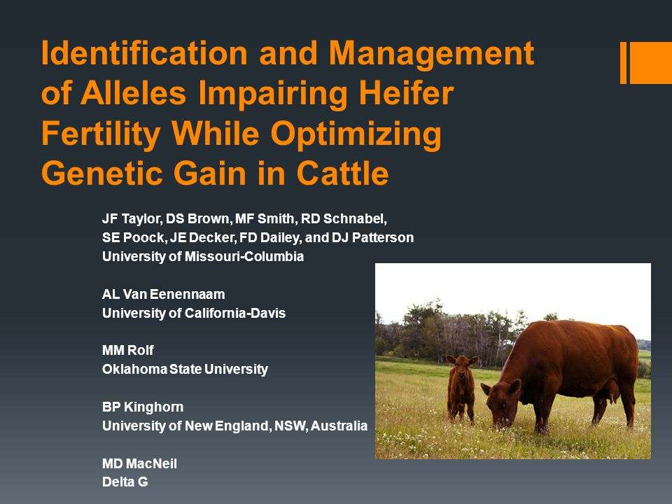 Project Goals and Background  Improve reproductive rate in US beef cattle  Does not sacrifice performance in other ERT  Improves overall profitability of the cowherd  No secret that reproduction is a very important trait in the cowherd  Maximize number of females that conceive early in the breeding season  Maintenance of pregnancies that are achieved takingstock.asas.org