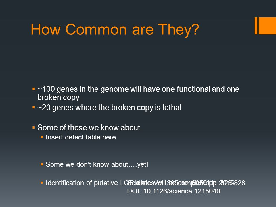 How Common are They?  ~100 genes in the genome will have one functional and one broken copy  ~20 genes where the broken copy is lethal  Some of the