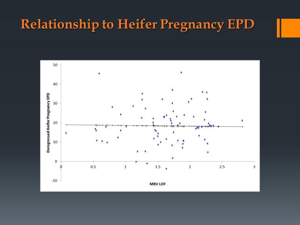 Relationship to Heifer Pregnancy EPD