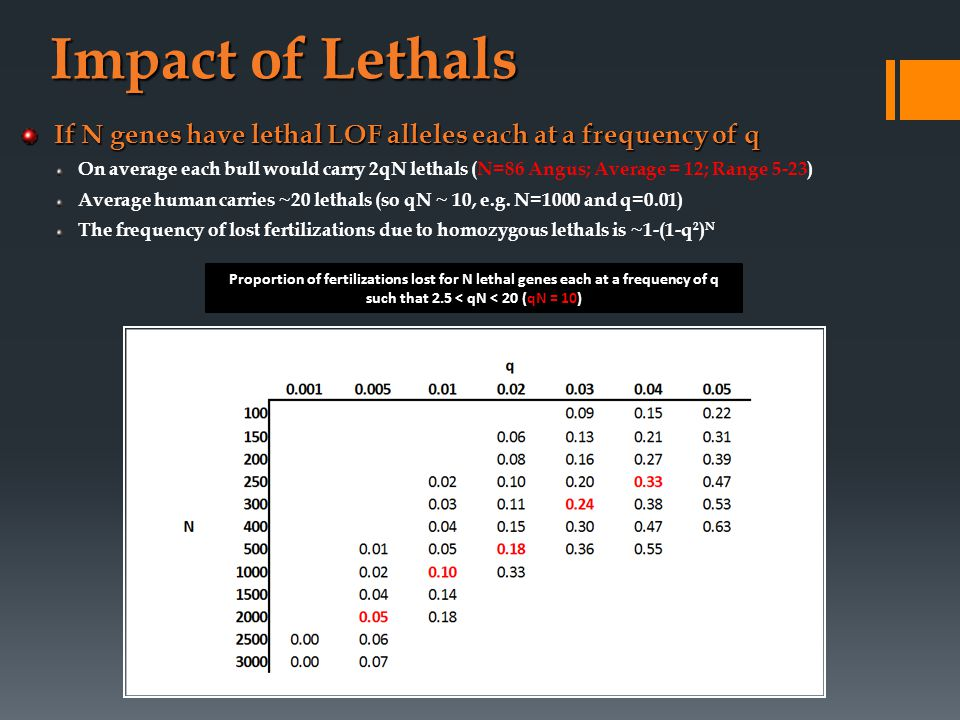 Impact of Lethals If N genes have lethal LOF alleles each at a frequency of q On average each bull would carry 2qN lethals (N=86 Angus; Average = 12; Range 5-23) Average human carries ~20 lethals (so qN ~ 10, e.g.