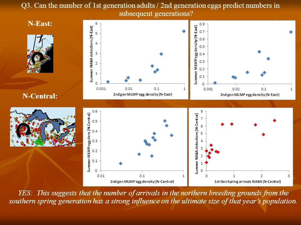 Q3. Can the number of 1st generation adults / 2nd generation eggs predict numbers in subsequent generations? YES: This suggests that the number of arr