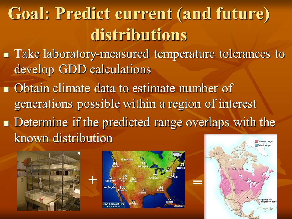 Goal: Predict current (and future) distributions Take laboratory-measured temperature tolerances to develop GDD calculations Take laboratory-measured temperature tolerances to develop GDD calculations Obtain climate data to estimate number of generations possible within a region of interest Obtain climate data to estimate number of generations possible within a region of interest Determine if the predicted range overlaps with the known distribution Determine if the predicted range overlaps with the known distribution + =