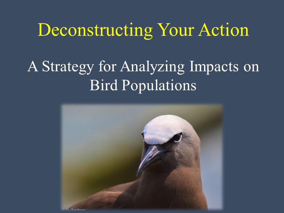 Deconstructing Your Action A Strategy for Analyzing Impacts on Bird Populations
