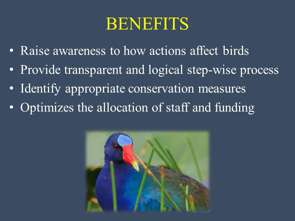 Raise awareness to how actions affect birds Provide transparent and logical step-wise process Identify appropriate conservation measures Optimizes the allocation of staff and funding BENEFITS