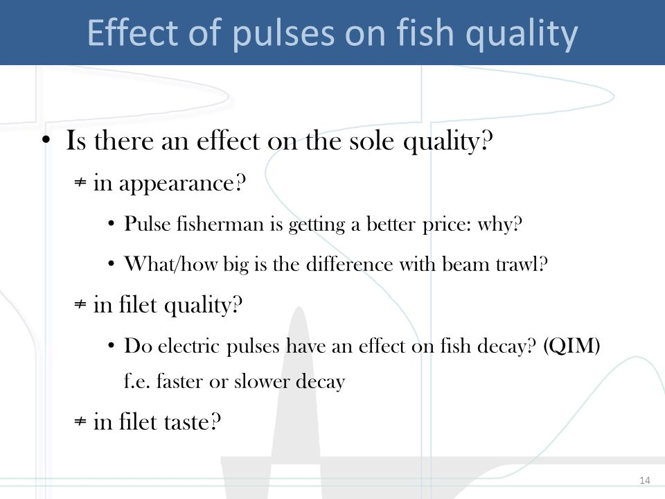 14 Effect of pulses on fish quality Is there an effect on the sole quality.