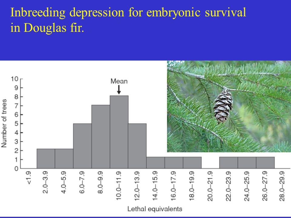 Inbreeding depression for embryonic survival in Douglas fir.