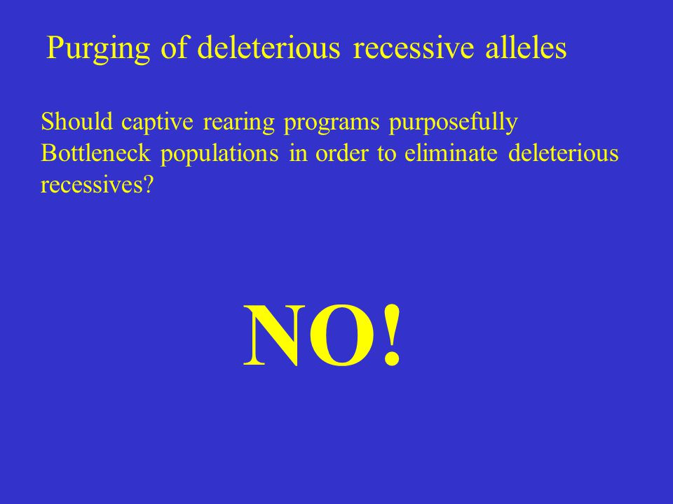 Purging of deleterious recessive alleles Should captive rearing programs purposefully Bottleneck populations in order to eliminate deleterious recessi