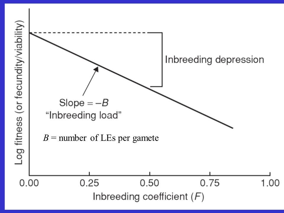 B = number of LEs per gamete