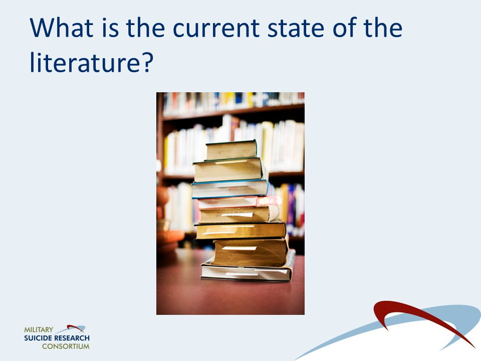 What is the current state of the literature