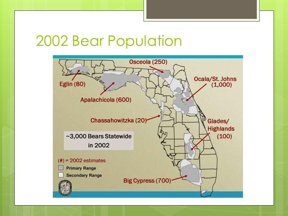 2002 Bear Population