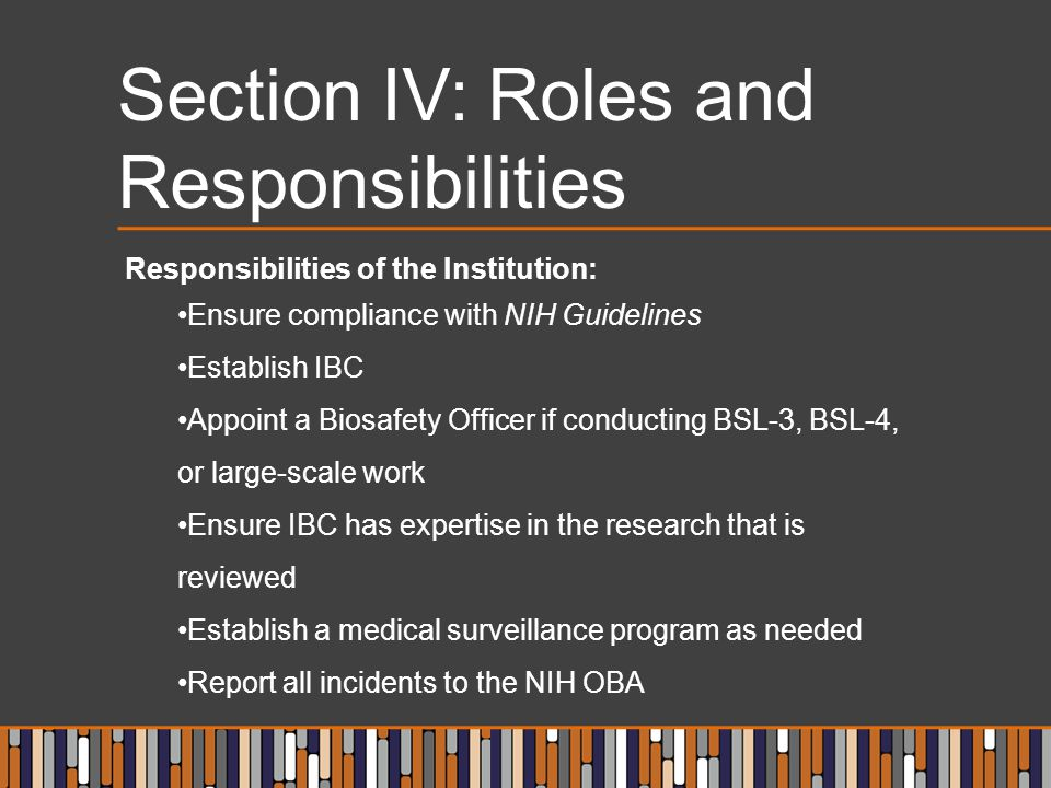 Section IV: Roles and Responsibilities Responsibilities of the Institution: Ensure compliance with NIH Guidelines Establish IBC Appoint a Biosafety Of