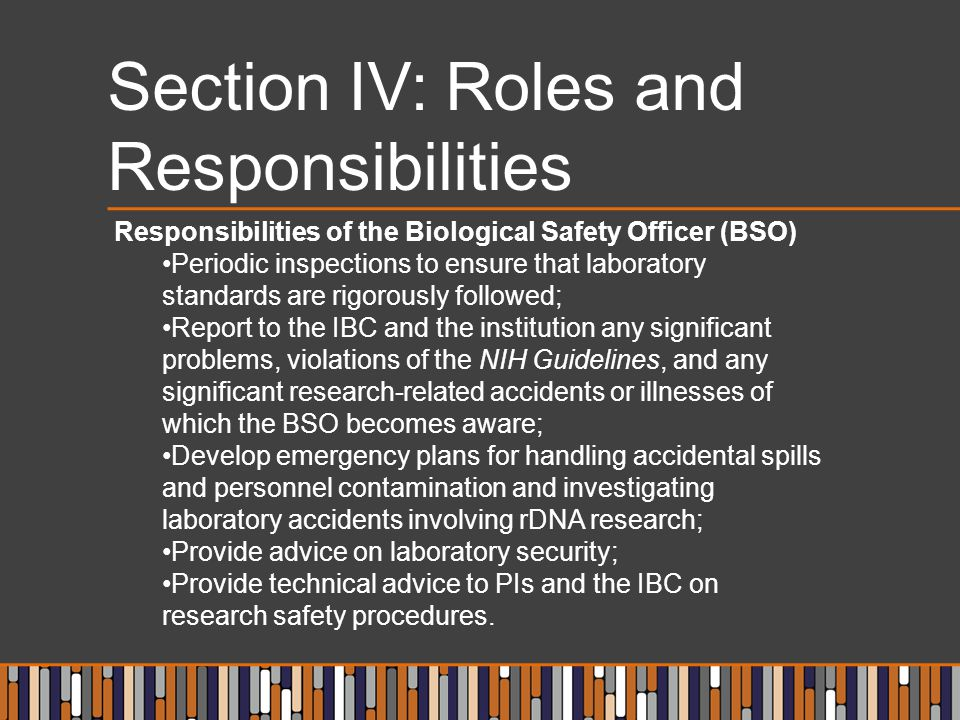 Section IV: Roles and Responsibilities Responsibilities of the Biological Safety Officer (BSO) Periodic inspections to ensure that laboratory standard