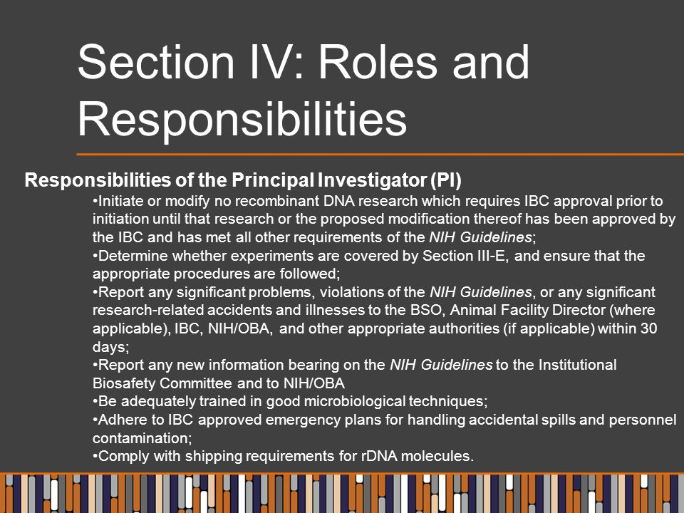 Section IV: Roles and Responsibilities Responsibilities of the Principal Investigator (PI) Initiate or modify no recombinant DNA research which requir